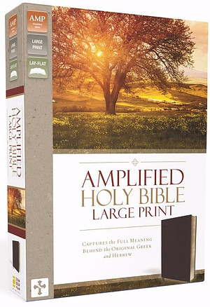 Amplified Large Print Holy Bible: Burgundy, Bonded Leather, Thinline