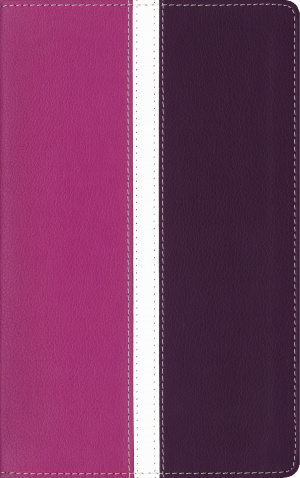 Amplified Holy Bible, Imitation Leather, Pink/Purple, Indexed