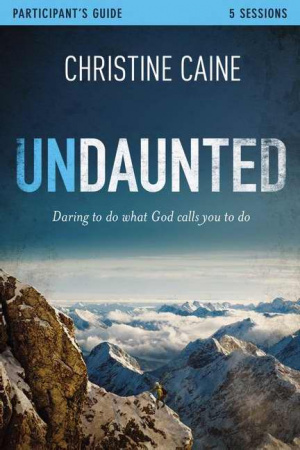 Undaunted Part Guide And Dvd Pb