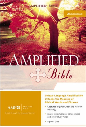 Amplified Bible: Navy, Bonded Leather