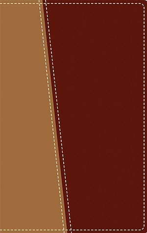 Amplified Topical Reference Bible: Tan / Burgundy, Italian Duo Tone