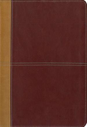 KJV Amplified Large Print Parallel Bible: Camel/Rich Red: Italian Duo-Tone™,