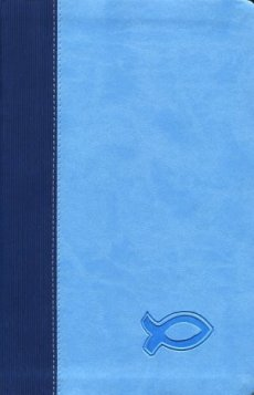 KJV Study Bible for Boys: Blue, Imitation Leather