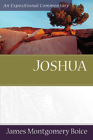 Joshua : Expositional Commentary