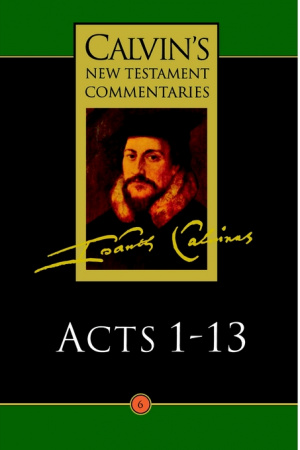 Acts 1 - 13 : Vol 6 : Calvin's New Testament Commentary