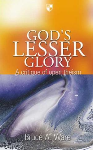 God's Lesser Glory: A Critique of Open Theism