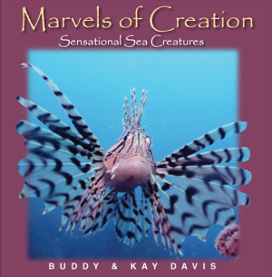 Marvels Of Creation Sensational Sea C Hb