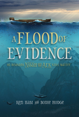 Flood Of Evidence,A