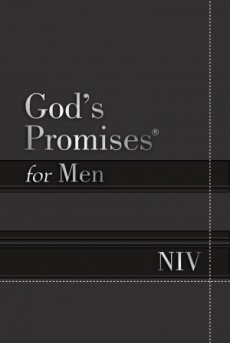 Gods Promises For Men, NIV