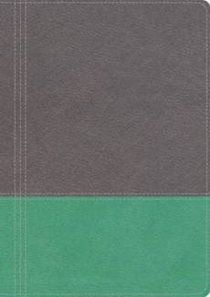 NKJV Modern Life Study Bible, Imitation Leather Turquoise Grey, Thumb Index