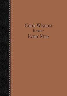 Gods Wisdom For Your Every Need Deluxe E