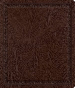 ESV Journaling Bible: Mocha, Threshold Design, Bonded Leather
