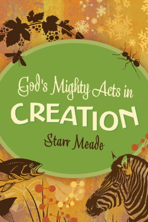Gods Mighty Acts In Creation