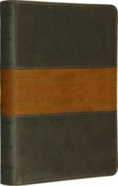 ESV Large Print Compact Bible: Forest Tan Trail, Imitation Leather