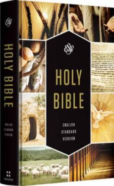 Esv Holy Bible Textbook Edition Hb