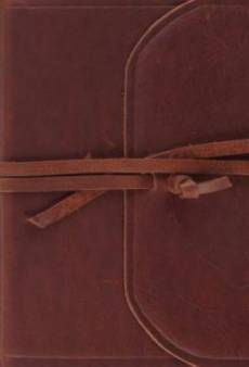 ESV Large Print Compact Bible (Flap with Strap)
