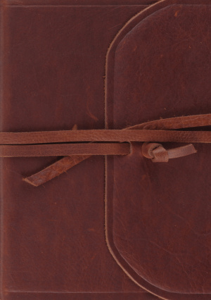 ESV Single Column Journaling Bible, Large Print (Brown, Flap with Strap)