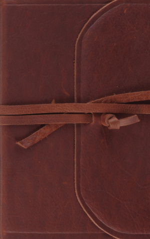 ESV Thinline Bible (Flap with Strap)