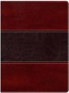 Nkjv Study Bible, Mahogany Leathertouch Indexed