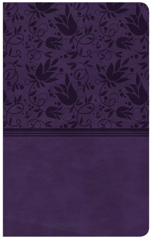 CSB Ultrathin Purple Reference Bible