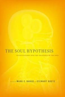 The Soul Hypothesis