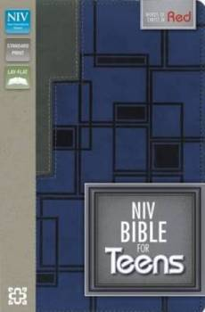 NIV Bible for Teens: Imitation Leather, Charcoal/Blue Duo Tone