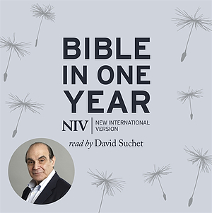 NIV Audio Bible in One Year on MP3 CD