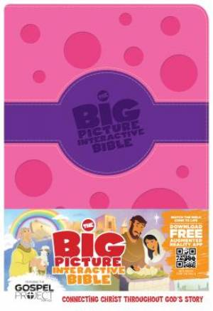 Big Picture Int Bible For Kids Purple Pi