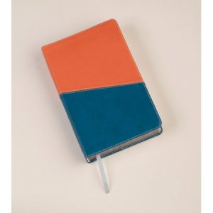 KJV Kids Study Bible: Terracotta/Blue