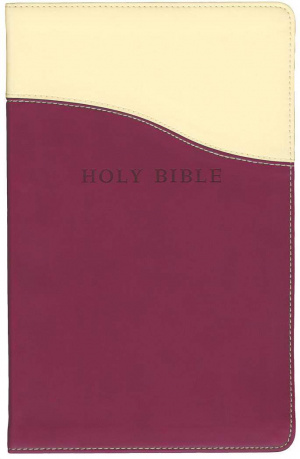 KJV Personal Size Giant Print Reference Bible Raspberry Imitation Leather