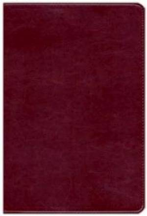 KJV Waterproof Bible Burgundy