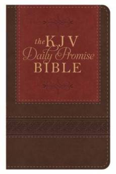 The KJV Daily Promise Bible