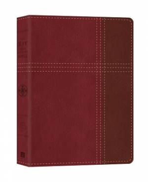 KJV Cross Reference Bible Imitation Leather