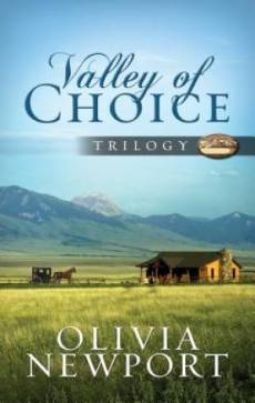 Valley Of Choice Trilogy Paperback