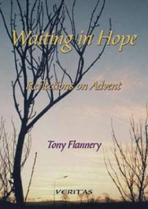 Waiting in Hope: Reflections on Advent