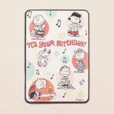 Peanuts - Birthday - It's Your Birthday - 6 Premium Cards