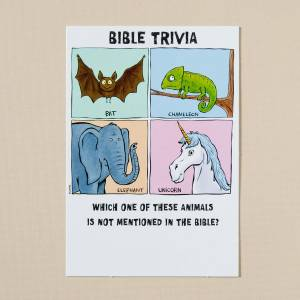 Bible Tails - Humour - Pack of 6 Birthday cards