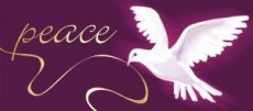 Peace Dove Christmas Cards - Pack of 10
