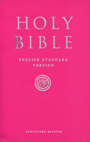 ESV Anglicized Pink Gift And Award Bible Pack of 10