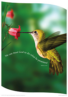 We Can Trust God Poster