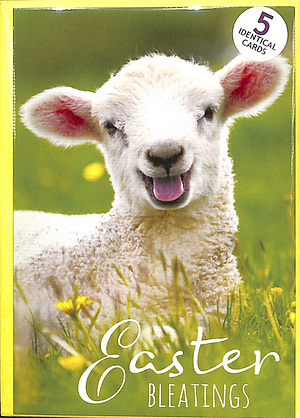 Easter Bleatings Cards Pack of 5