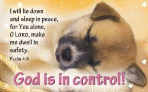 """God Is in Control"" (Tan) Pass-Around Cards"