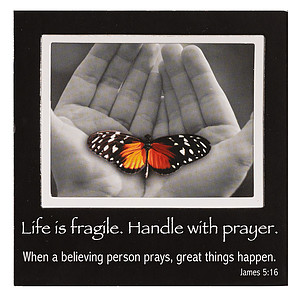 Life is Fragile Magnetic Picture Frame