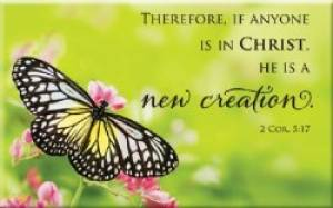Magnet - Butterfly - 2 Cor 5:17