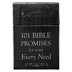 101 Bible Promises for Your Every Need