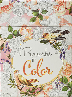 Proverbs in Colour Box of Blessings