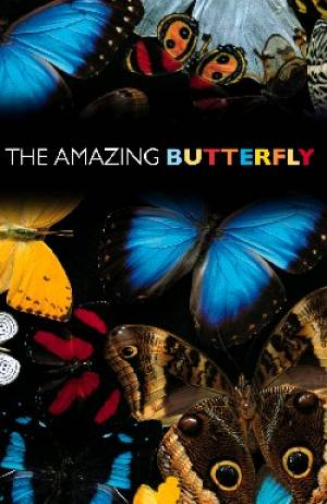 Amazing Butterfly Tracts