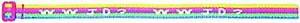 WWJD Rainbow Bracelet Pk 25