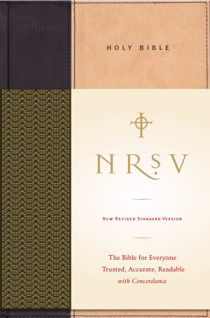 NRSV Standard Bible Hardback Tan / Black
