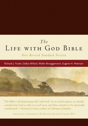NRSV Renovare Life With God Study Bible: Burgundy, Imitation Leather